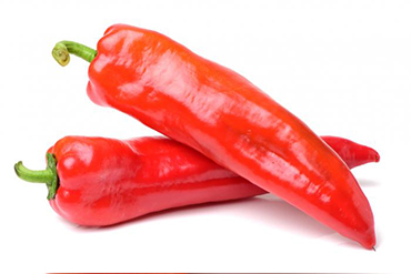 how to grow hot or chili peppers